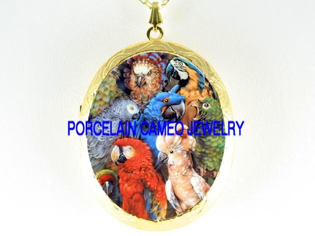 PARROT MACAW AFRICAN GRAY BIRD COLLAGE CAMEO LOCKET NK