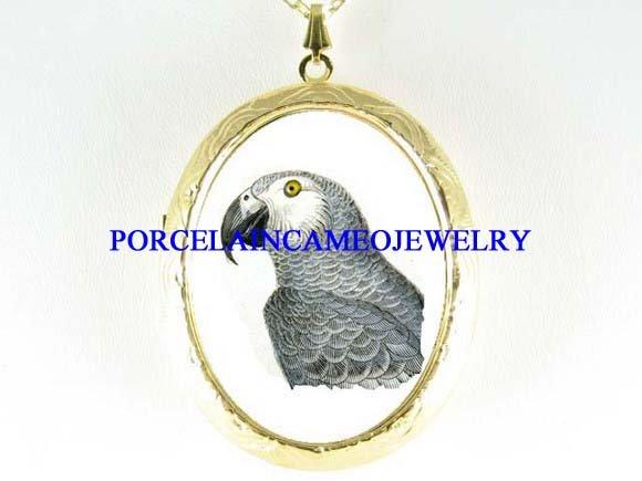 AFRICAN GREY PARROT BIRD PORCELAIN CAMEO LOCKET NECKLACE
