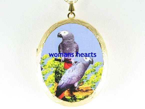 2 AFRICAN GRAY PARROT CAMEOPORCELAIN LOCKET NECKLACE