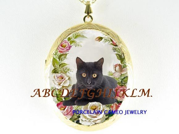 BLACK CAT PINK ROSE PORCELAIN CAMEO LOCKET NECKLACE