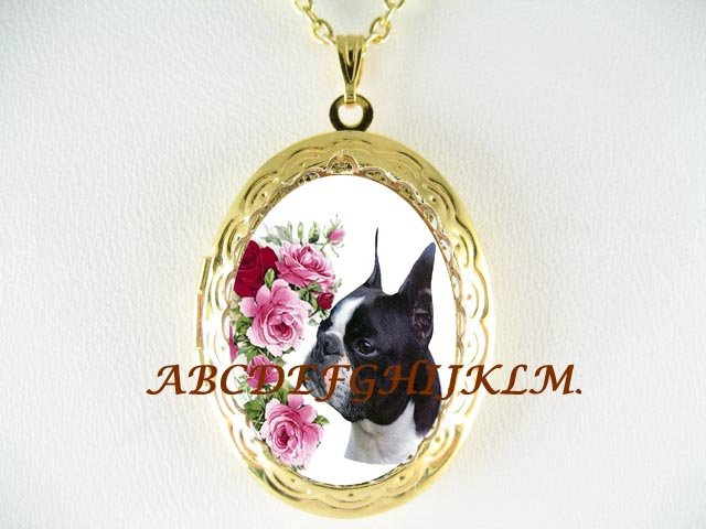BOSTON TERRIER DOG VICTORIAN ROSE PORCELAIN CAMEO ANTIQUE VINTAGE LOCKET NECKLACE