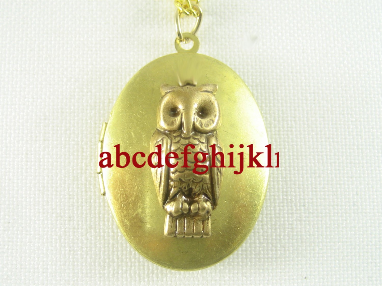 GOLDEN SMART OWL BIRD VINTAGE ANTIQUE OVAL LOCKET NECKLACE