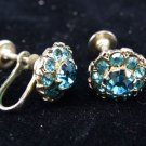 Blue Rhinestone Flower Screw Post Style Earrings