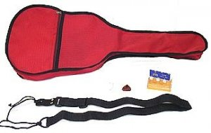 guitar gigg bag  (dsp)