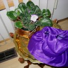Victorian style Purse Purple Evening Bag, Free  Shipping