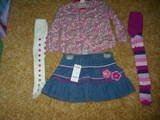 Gymboree Pretty in Plums 3T NWT