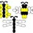 itty bugs