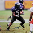 LaDainian Tomlinson Signed TCU Horned Frogs 16x20 Photo TRISTAR/Player COA