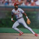 Ozzie Smith Signed 16x20 Photo (PSA/DNA)