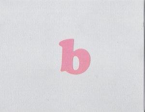"""Initial """"B"""" Card-Rose & Lavendar"""
