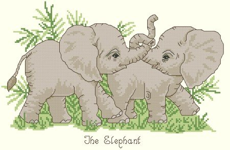 Playful Baby Elephants