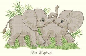 Playful Baby Elephants