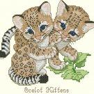 Pair of Ocelet Kittens