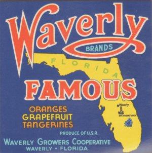 LOT of 10 Same Original Waverly Famous Vintage Orange Crate Label Waverly, FL.