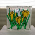 Hand Painted Iris Glass Block Light