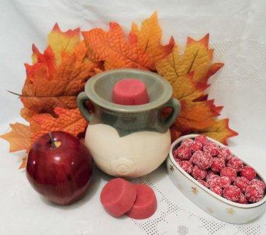 Cranberry Apple  Soy Wax Tarts 3 Piece Set
