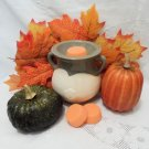 Pumpkin Spice Soy Wax Tarts 3 Piece Set