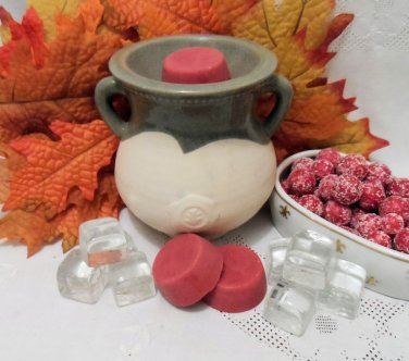 Iced Cranberry Soy Wax Tarts 3 Piece Set