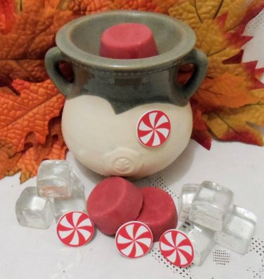 Peppermint Soy Wax Tarts 3 Piece Set