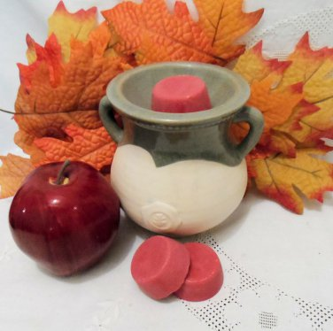 Mountain Apple Soy Wax Tarts and Cranberry Spice Tea Lights Set of 3 Each