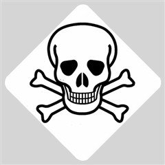 Jolly Roger Car Window Sign