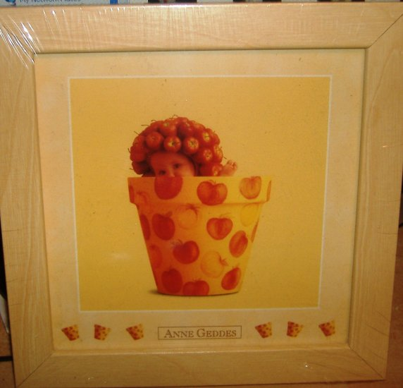 Ann Geddes 3 x 5 print flower pot baby, NEW LOOK!