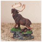 Moose On Grass