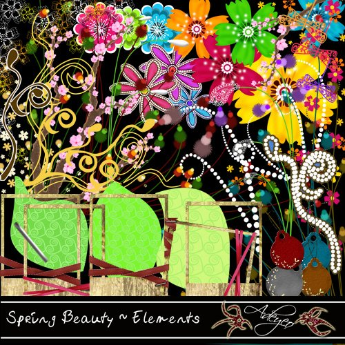 Adeyeo-Spring Beauty Elements