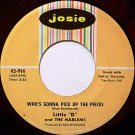 Little D And The Harlems - Who's Gonna Pick Up The Pieces - Vinyl 45 Record - R&B Soul Doo Wop