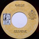 Five Flights Up - Black Cat / Do What You Wanna Do - Vinyl 45 Record on TA - R&B Soul