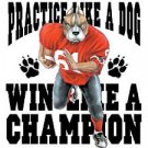 Practice Like a Dog    Win Like a Champion