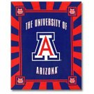 University of Arizona Panel