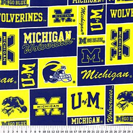 University of Michigan Wolverines 36x60
