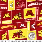 University of Minnesota Gophers 32x60