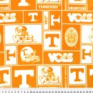 University of Tennessee Vounteers 36x60