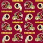 Washington Redskins 36x60