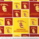 University of Southern California Trojans 36x60