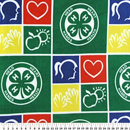 4H Club Allover 36x60