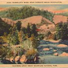 OCONALUFTY RIVER NEAR CHEROKEE INDIAN RESERVATION GREAT SMOKY MOUNTAINS LINEN POSTCARD #67 UNUSED