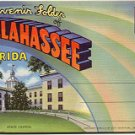GREETINGS FROM THE CAPITOL CITY TALLAHASSEE FLORIDA LINEN POSTCARD BOOKLET #70 UNUSED
