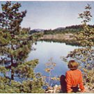 CANADIAN LAKE REAL PICTURE ROUND CORNER POSTCARD #81 UNUSED