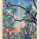 SAN JACINTO MEMORIAL SHAFT AT SAN JACINTO BATTLEGROUND TEXAS LINEN POSTCARD #89 UNUSED