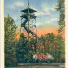 OBSERVATION TOWER AND DOGWOOD BLOSSOMS VALLEY FORGE PENNSYLVANIA LINEN POSTCARD #134 UNUSED