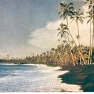 KALAPANA BEACH LOCATED ON THE ISLAND OF HAWAII PICTURE POSTCARD #152 UNUSED