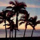 A FLORIDA SUNRISE PICTURE POSTCARD #171 USED 1958