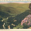 LITTLE PIGEON RIVER GORGE THE CHIMNEY TOPS SMOKY MOUNTAINS NATL PARK LINEN POSTCARD #230 UNUSED