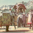 ELEPHANT RIDE AT AMBER PALACE JAIPUR INDIA COLOR PICTURE POSTCARD #417 UNUSED