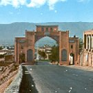 SHIRAZ GHORAN GATE INDIA COLOR PICTURE POSTCARD #427 UNUSED