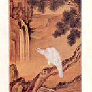 WHITE HAWK BY LANG SHIH-NING NATL PALACE MUSEUM TAIPEI TAIWAN COLOR PICTURE POSTCARD #465 UNUSED