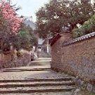 BACK ROAD TO NIGATSU-DO HALL T0DAIJI TEMPLE COLOR PICTURE POSTCARD #467 UNUSED